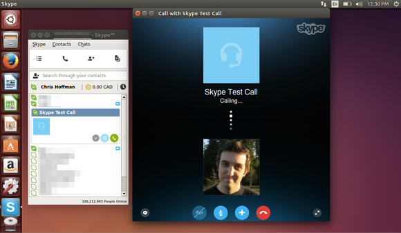 The contacts and call screens on Skype for Linux