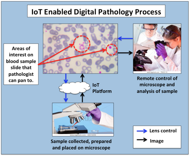 Pathology IoT SkilledAnalysts.com