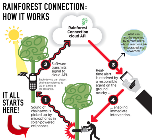 Rainforest Connection approach