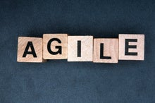 Mastering the domain with agile business models