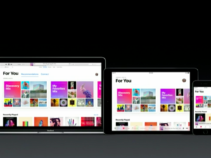 apple music primary