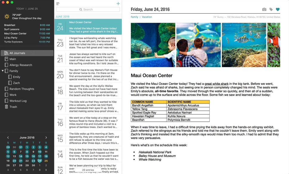 Daylife review: Slick Mac journal software isolated from a connected