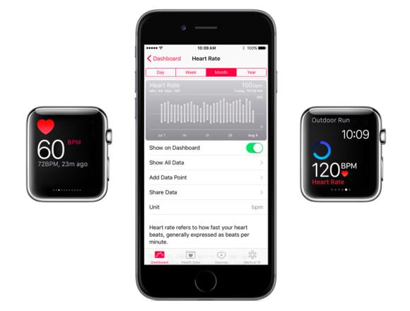 health heart rate apple watch
