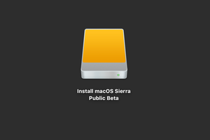 sierra beta boot drive icon