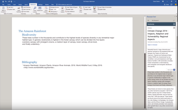 Microsoft word Researcher