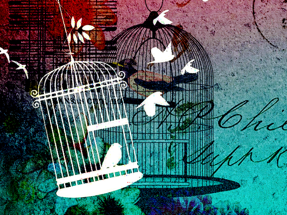 free bird escape birdcage
