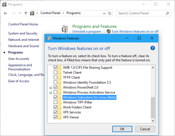 The Windows Subsystem for Linux feature.
