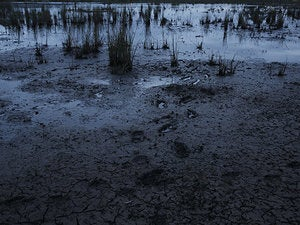 Navigating the muddy waters of enterprise infosec