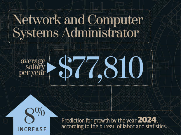 computer network systems and database administrators