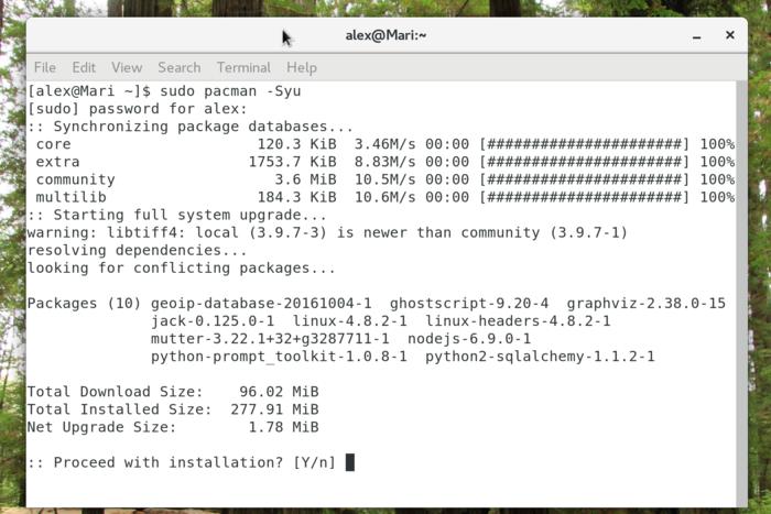 sudo pacman -Syu in Arch Linux