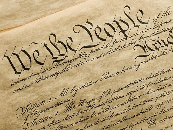 02 constitution