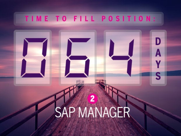 2. SAP manager