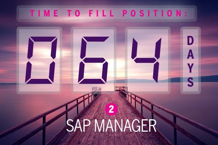 2. SAP manager