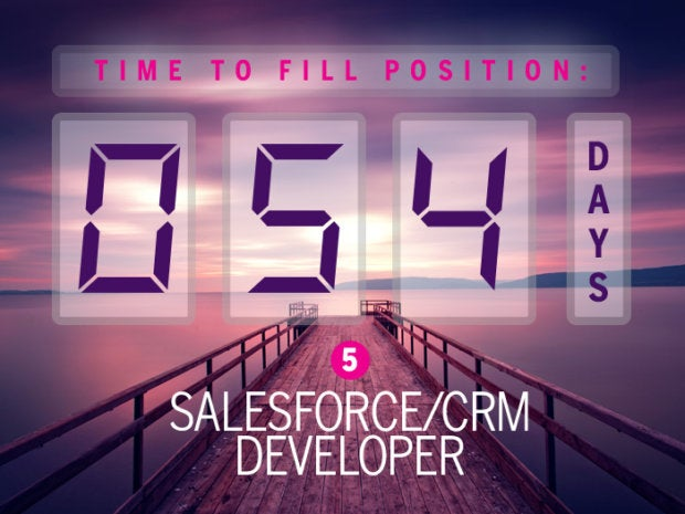5. Salesforce/CRM developer
