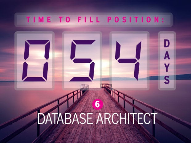 6. Database architect