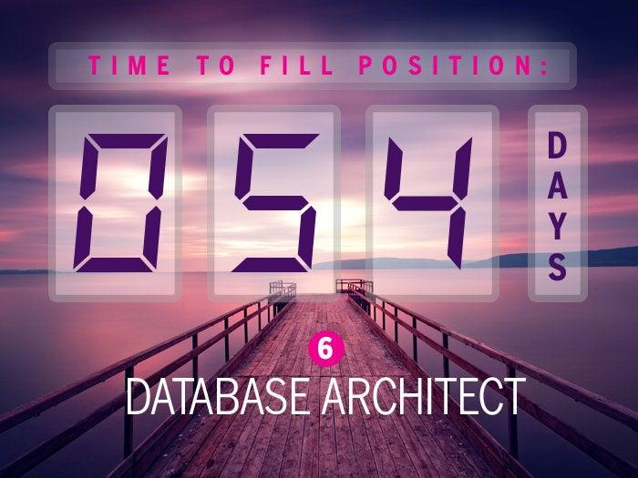 6. Database architect