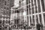 apple 763766