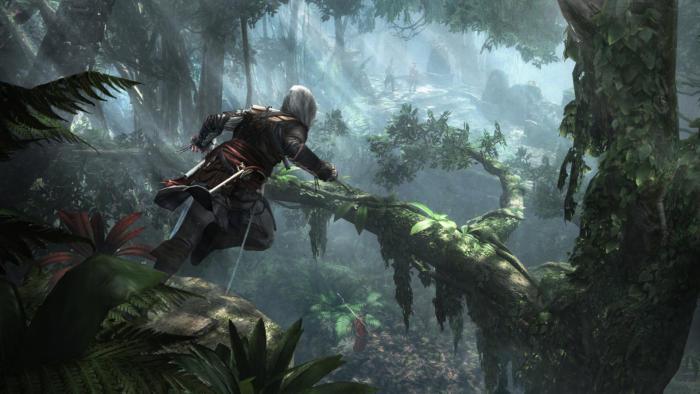 Assassin's Creed IV bullshot