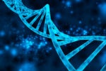 An Intro to Genetic Algorithms