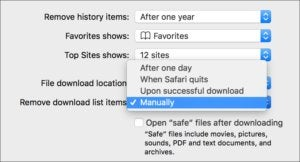 os x safari download manager