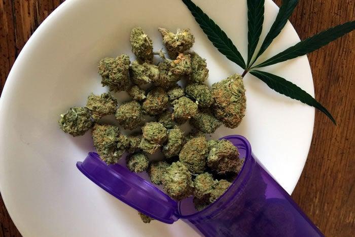 cannabis weed marijuana