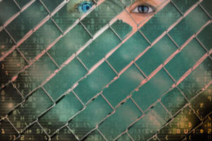 Data privacy is the new strategic differentiator
