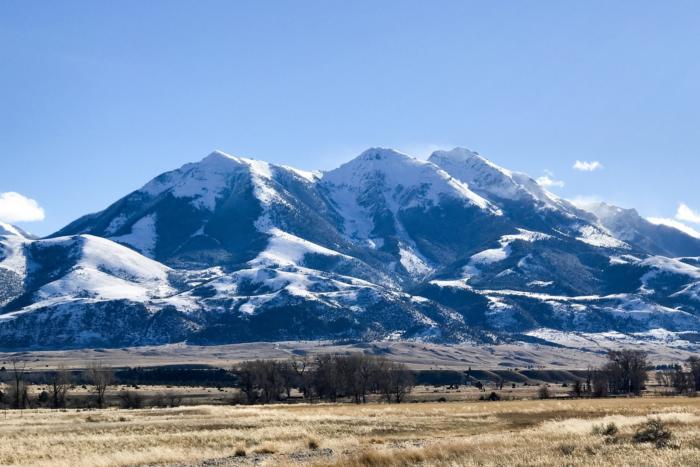 travel bellamy montana