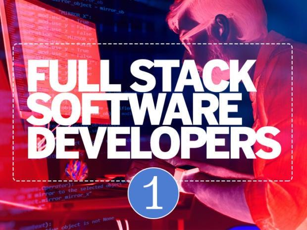 1: Full-stack software developers