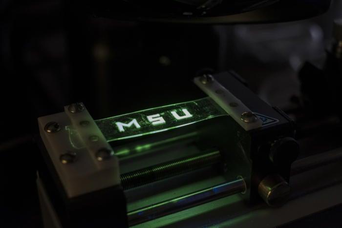msu stretchy display