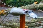 smashed mailbox