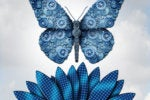 butterfly with gears above flower transformation
