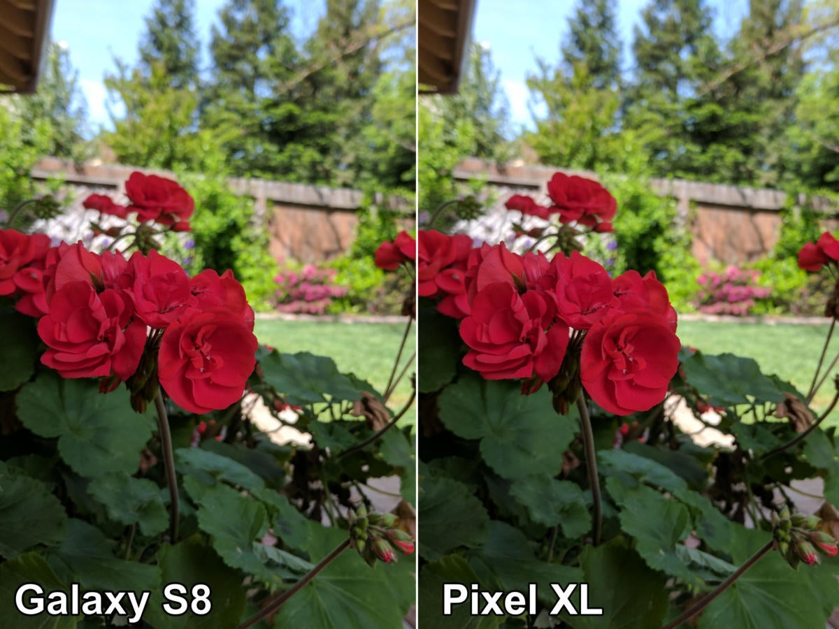galaxy s8 pixel flower2 compare
