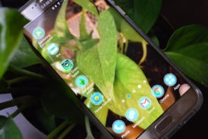 The 5 Android gardening apps you need this spring