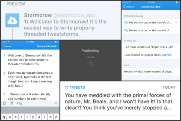 stormcrowcollage