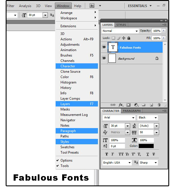 03 define character font style attributes etc