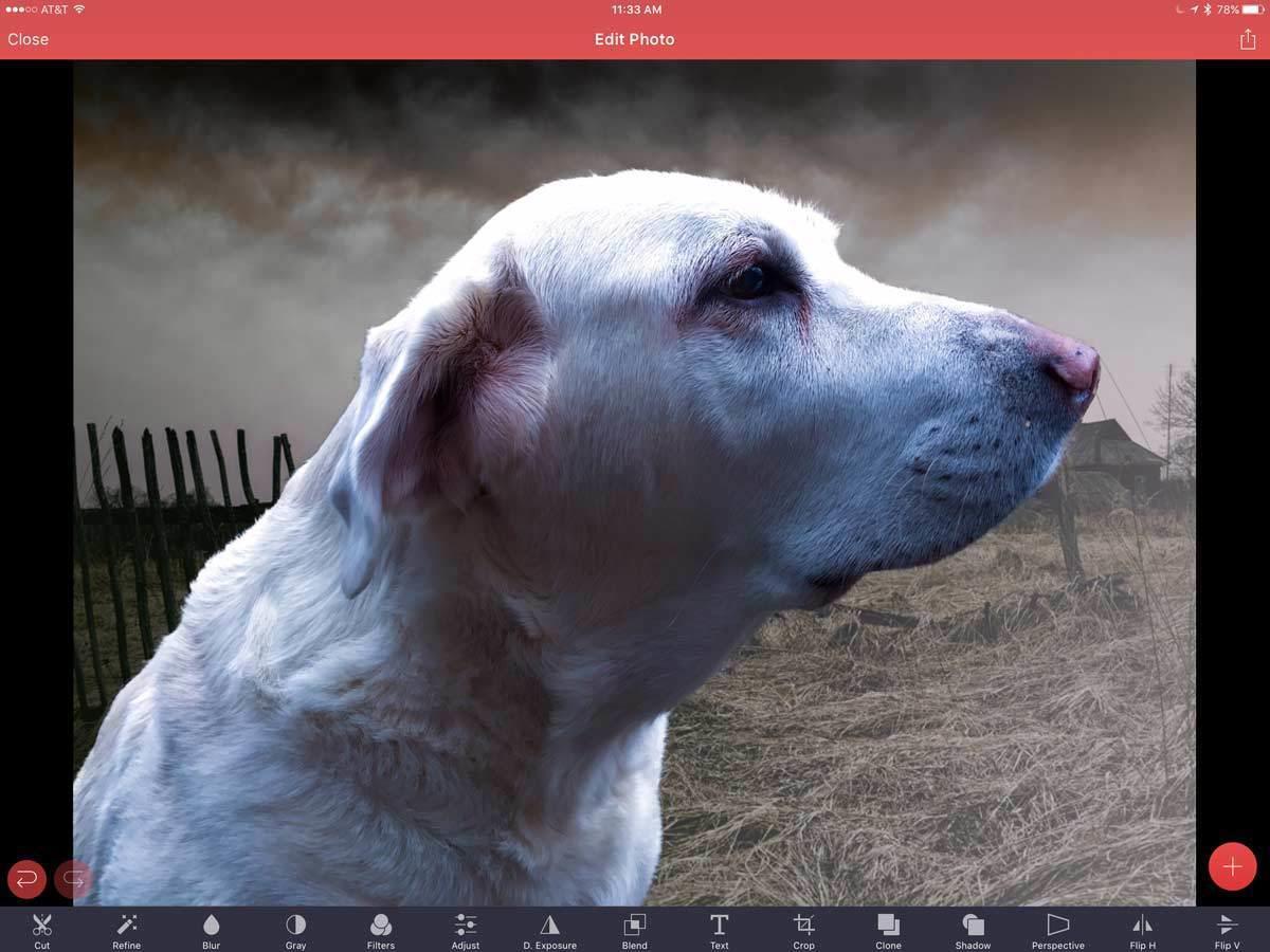 pixomatic 3 ipad edit photo