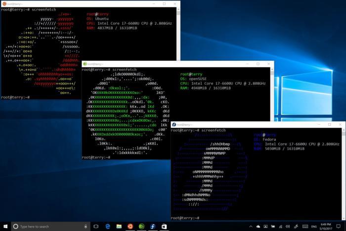 windows 10 suse linux