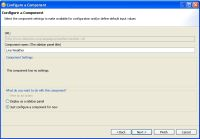 Configuring Widgets in Lotus Notes 8