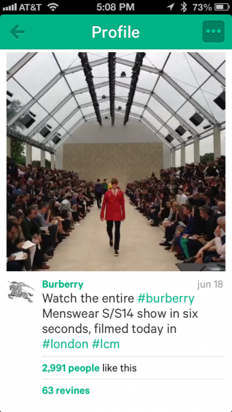 Burberry Vine