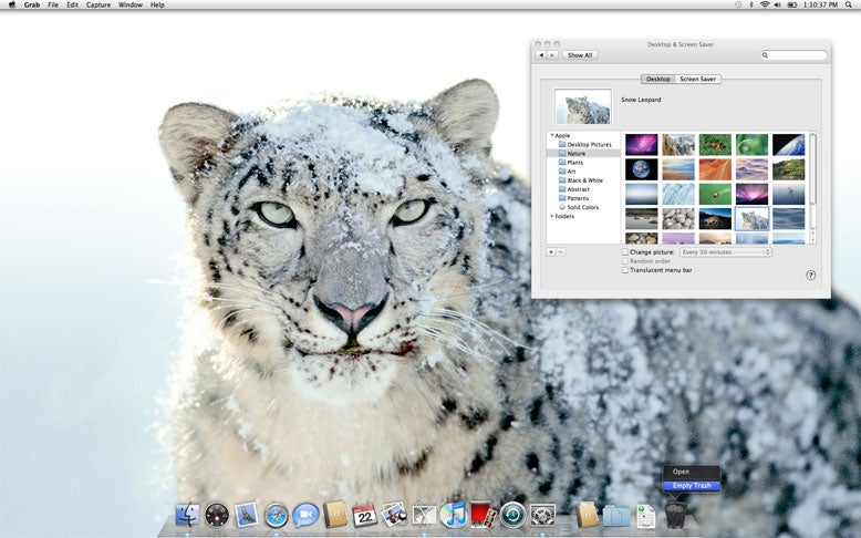 Apple has included new desktop background images, including this one of a Snow Leopard.