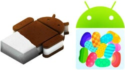 Android ICS, Jelly Bean