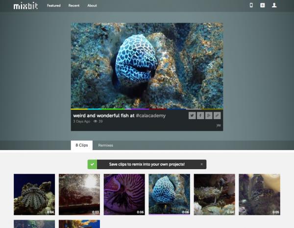 screenshot_web_view.png