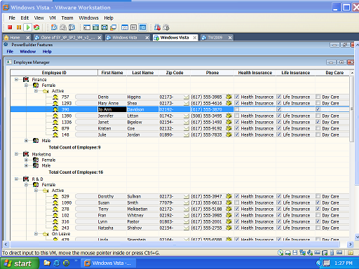Updateable Grid TreeView DataWindow 01 sm.png