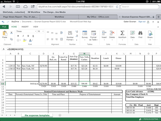 iPad running Excel via Office Web Apps