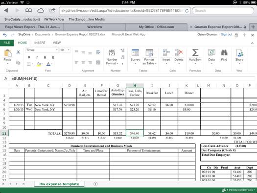 iPad running Excel via Office Web Apps