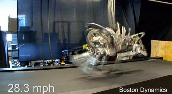 CheetahRobot590.jpg