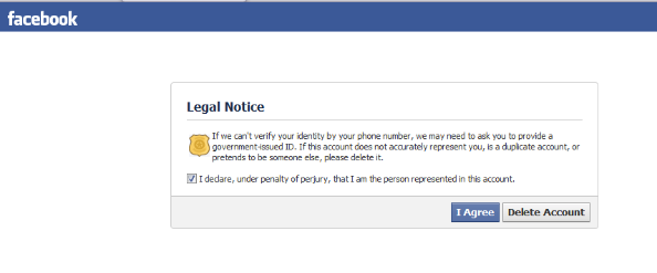 facebook perjury warning cropped.png