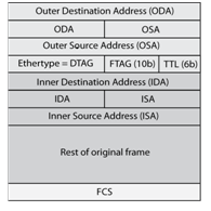 L2MP Frame Format