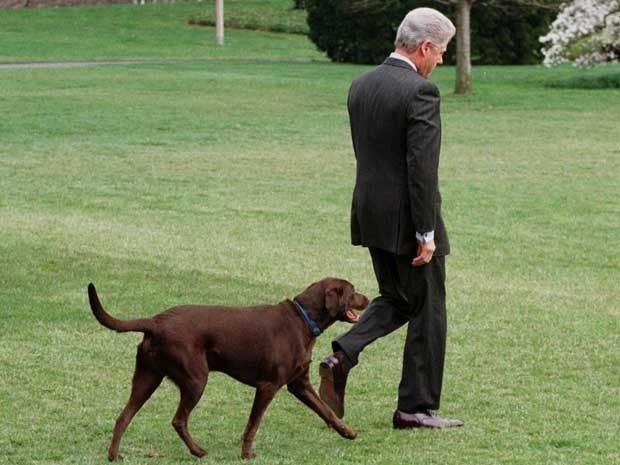 Bill Clinton and Buddy the dog