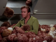 Expense In Depth And The Trouble With The Tribbles